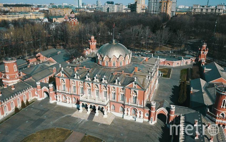 Петровский парк и его обитатели. Фото mos.ru