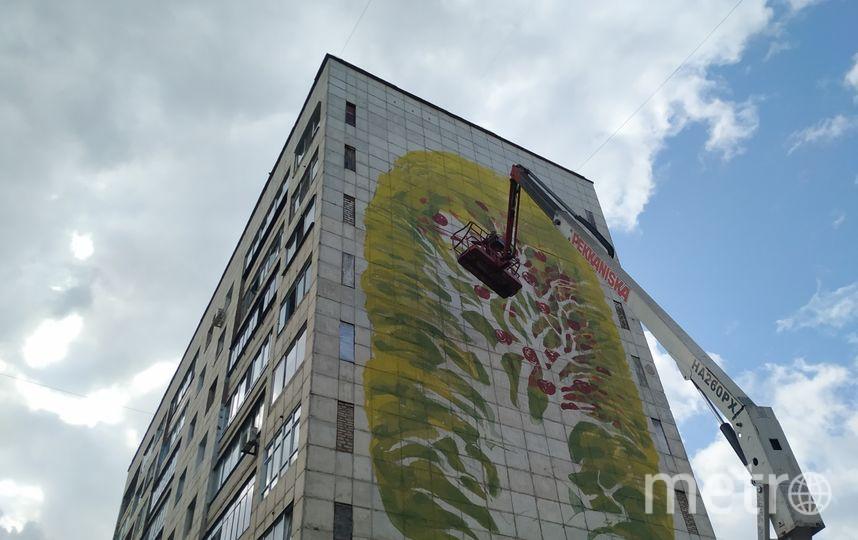 "Муралы преобразили целый город. Фото Ольга Кабанова, ""Metro"""