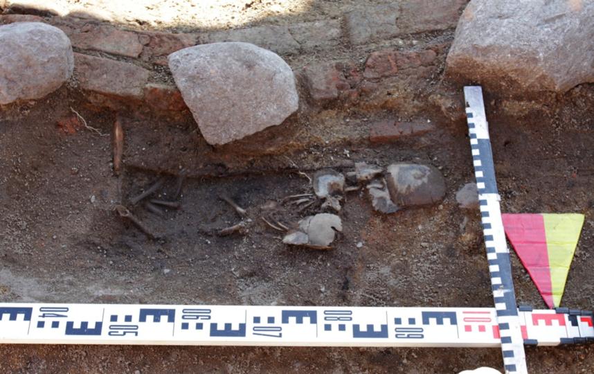 Находки археологов. Погребение 11. Фото пресс-службы ИИМК РАН