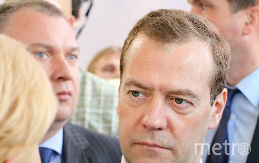 Дмитрий Медведев. Фото pixabay