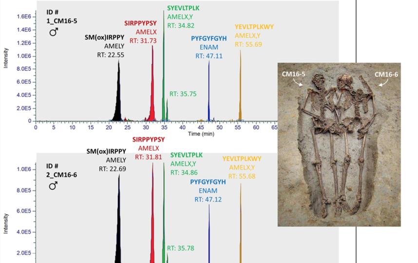 Останки, датируемые IV-VI веком нашей эры, принадлежат двум взрослым людям, которые были похоронены в одной могиле рука об руку. Фото https://www.nature.com/articles/s41598-019-49562-7/figures/2