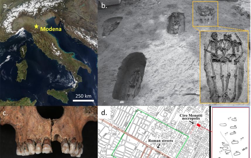 Данные скелеты были обнаружены вместе с другими одиннадцатью особями в Италии в 2009 году. Фото https://www.nature.com/articles/s41598-019-49562-7/figures/1