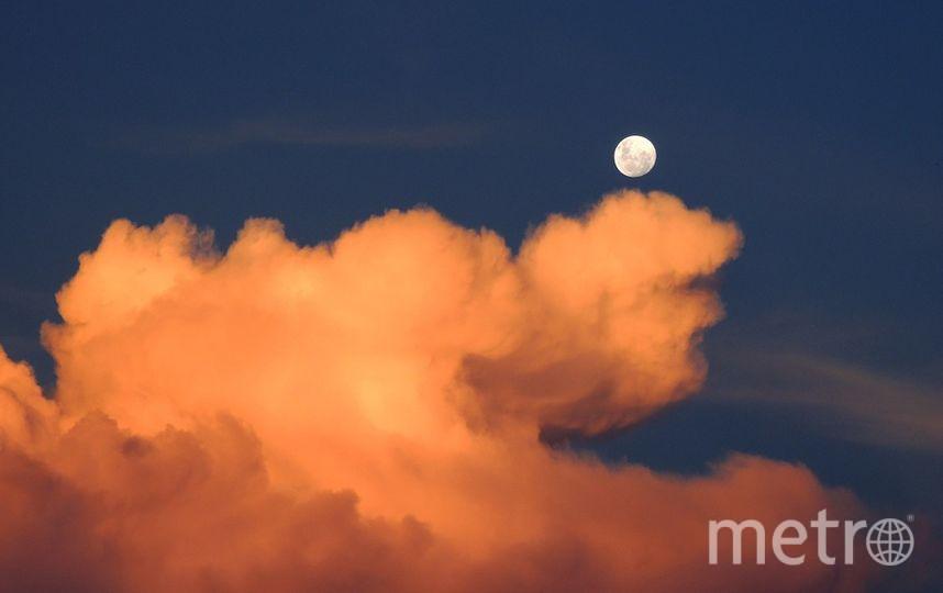 """Полную Луну можно будет наблюдать 13 сентября. Фото https://pixabay.com, """"Metro"""""""