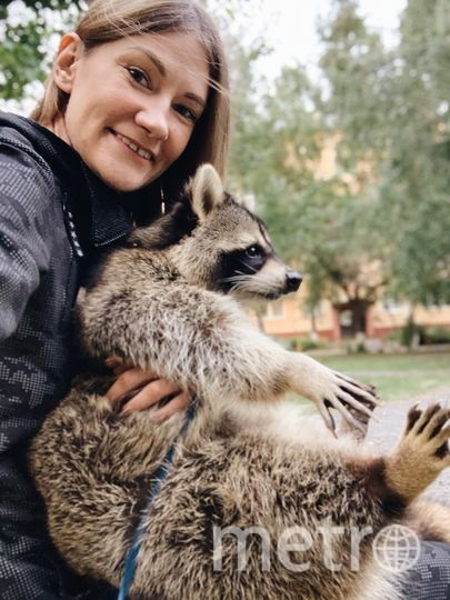 Елена и её енот Тёма. Фото преоставила Елена Троскина