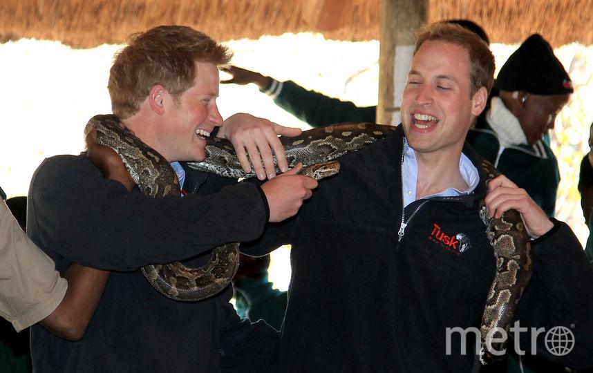 Принц Гарри с братом Уильямом во время визита в Ботсвану, 2010. Фото Getty