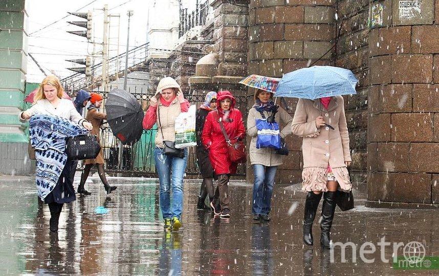 На предстоящей неделе Москву ожидает похолодание, возможно выпадение мокрого снега. Фото Василий Кузьмичёнок