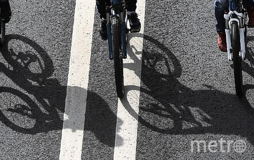 В Московском велофестивале приняли участие около 30 тысяч человек. Фото AFP