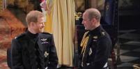 Британцы недовольны тем, как принц Уильям поздравил принца Гарри