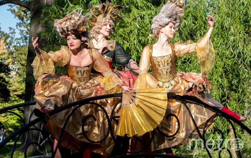 Чайный фестиваль. Фото Ботанический сад, Предоставлено организаторами