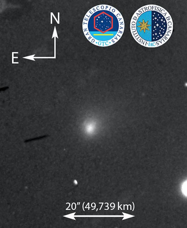 Астрономы при помощи Большого Канарского телескопа провели наблюдения первой межзвёздной кометы C/2019 Q4 (Borisov). Фото  Instituto de Astrofisica de Canarias