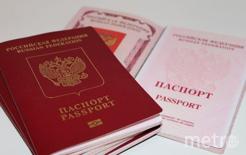 """Подавляющее большинство (72%) опрошенных специалистами """"Левада-центра"""" выступают за ограничение притока мигрантов в Россию. Фото pixabay.com"""