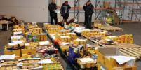 Около 1,2 тонны санкционных продуктов уничтожили в Ленобласти