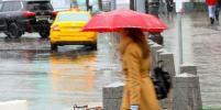 Синоптики предупредили о мокром снеге и сильном ветре в Москве