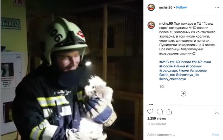 """Пожар в Гранд парк в Грозном. Спасатели вынесли на руках 10 животных. Фото https://www.instagram.com/mchs.95/, """"Metro"""""""