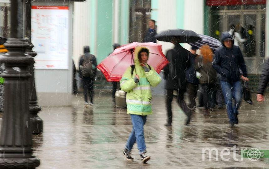 Уже на следующей неделе в Москву вернётся ясная погода без осадков. Архивное фото. Фото Василий Кузьмичёнок