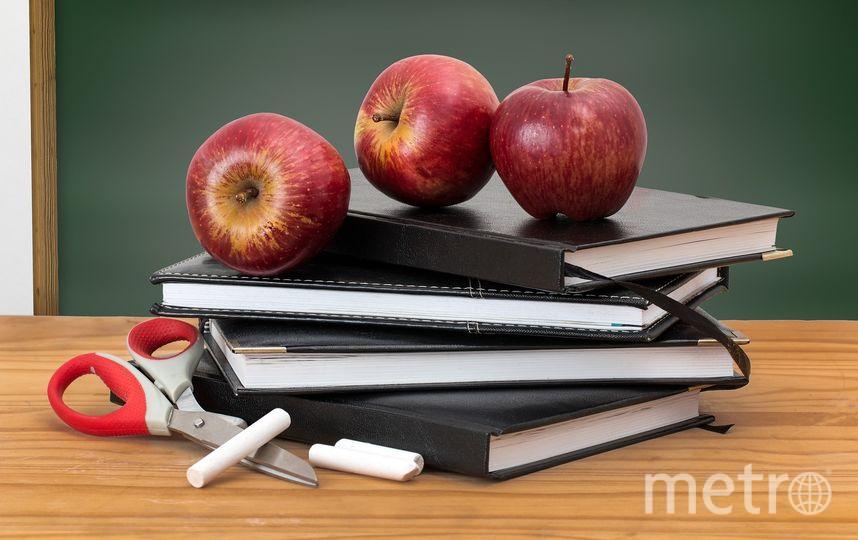 Перекус в школе должен быть правильным. Фото https://pixabay.com/