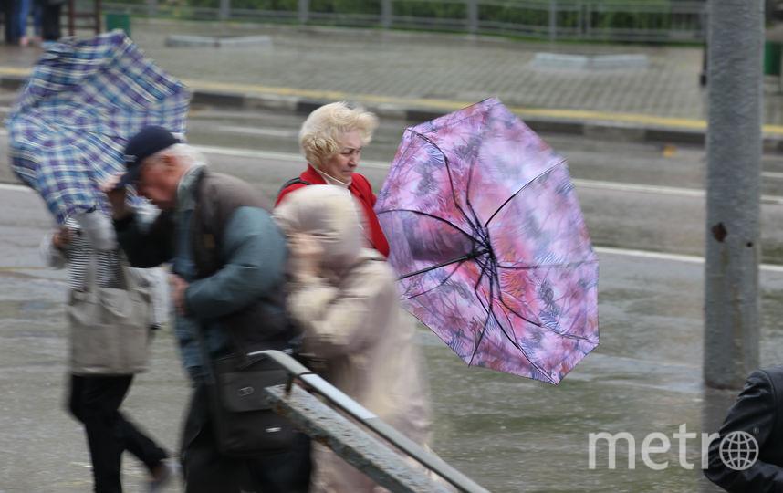 22 сентября действовало экстренное предупреждение о непогоде из-за ветра с порывами до 17-22 м/с. Фото Василий Кузьмичёнок