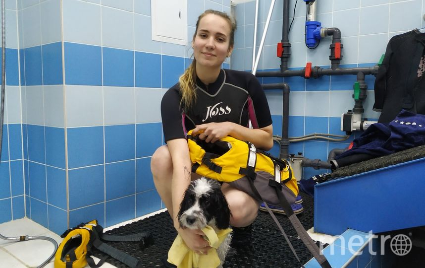 """Кинолог Валерия постоянно контролирует состояние собаки. Фото Ольга Кабанова, """"Metro"""""""