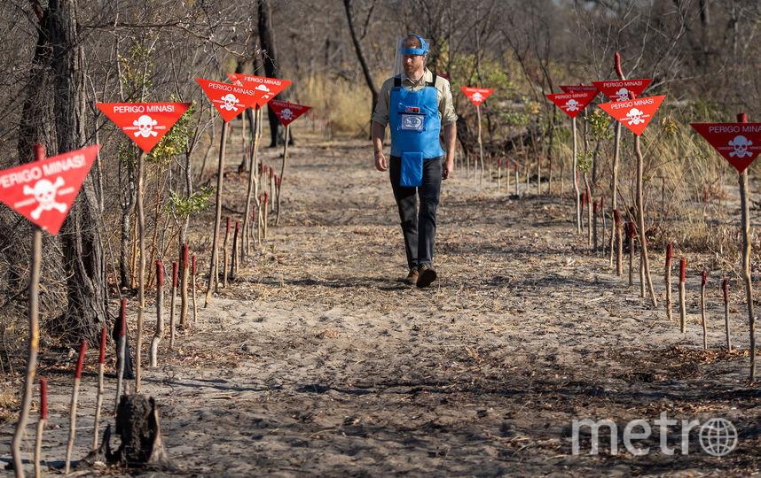 Принц Гарри в Анголе. Фото Getty