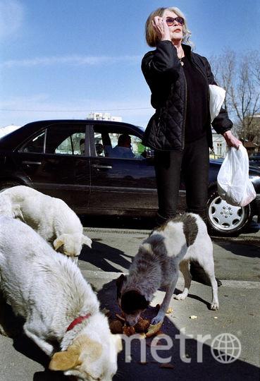 Брижит Бардо. Фото Getty