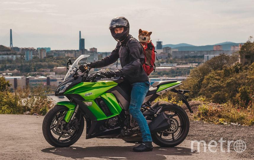 Деймос сопровождает хозяина и в поездках на мотоцикле. Фото предоставлено Владимиром Чернышовым