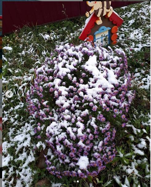 """Снег пошел в Сибири и на Алтае. Фото """"Metro"""""""