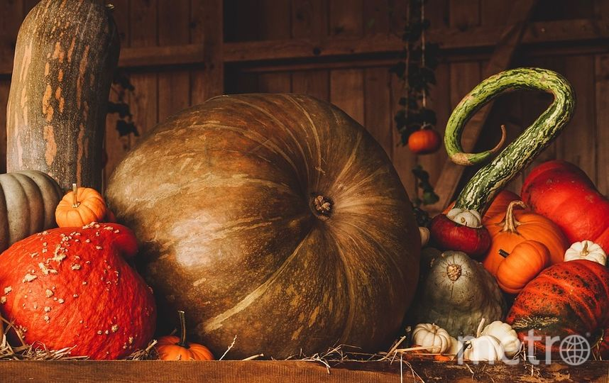 "Не забудьте про Хэллоуин. Фото https://pixabay.com, ""Metro"""