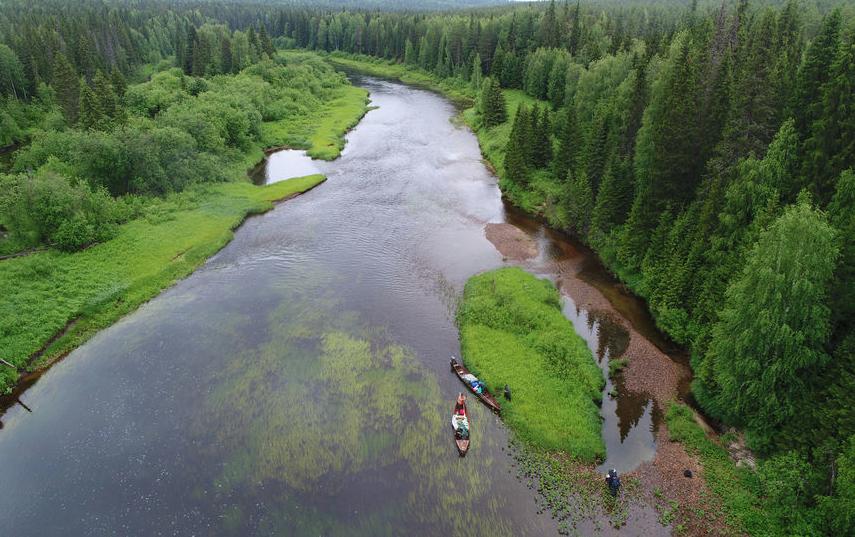 Река Юла в первозданной Двинско-Пинежской тайге с высоты птичьего полета. Фото предоставлено WWF