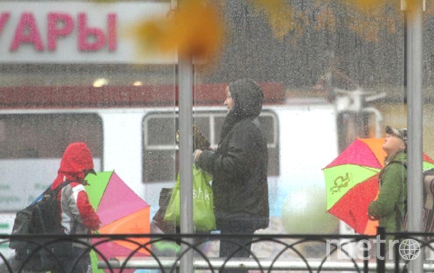 В Петербурге обещают снег с дождем уже в ближайший понедельник. Фото Getty