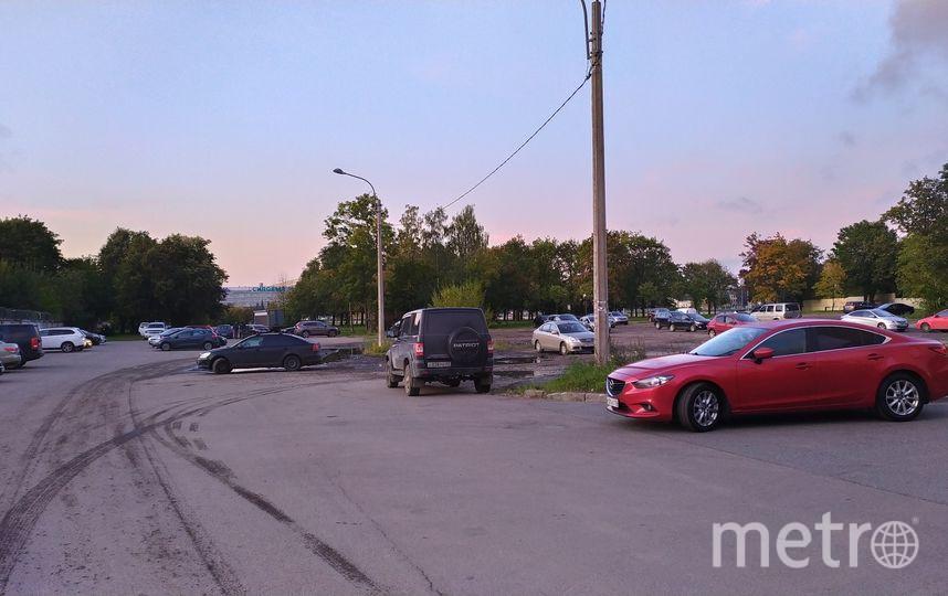 В Петербурге сад на Неве залит нефтепродуктами. Фото mytndvor, vk.com