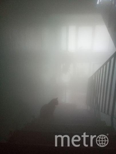 В Колпино дом заволокло паром из-за прорыва трубы. Фото ДТП и ЧП | Санкт-Петербург | Питер Онлайн | СПб, vk.com