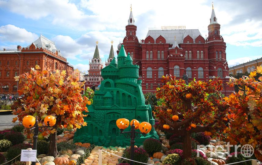 Шесть приглашений на осенний фестиваль в Москве. Фото Василий Кузьмичёнок