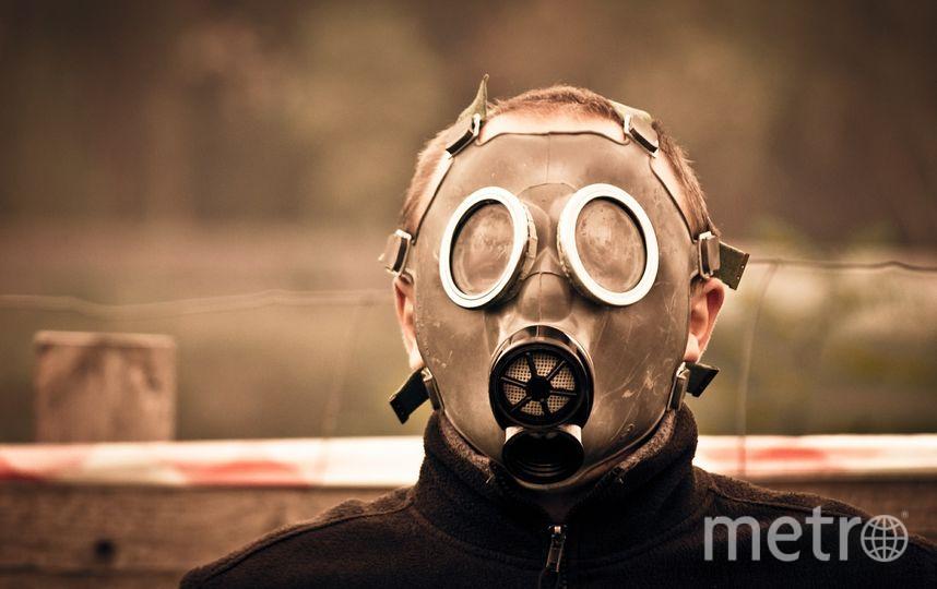Учёные назвали страны, в которых можно спастись от апокалипсиса, вызванного глобальной эпидемией. Фото pixabay.com