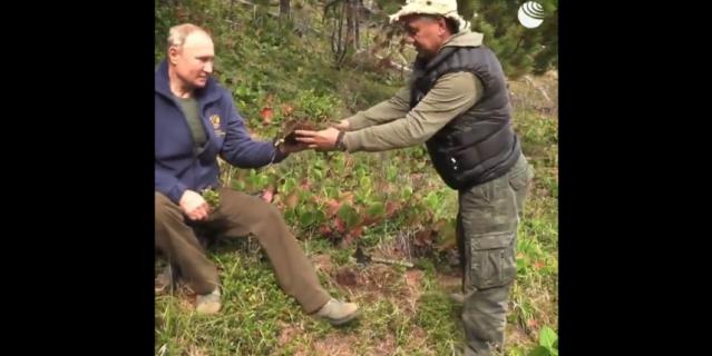Путин провел день в тайге.