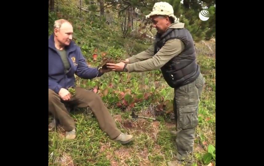 """Путин провел день в тайге. Фото скрин-шот, """"Metro"""""""