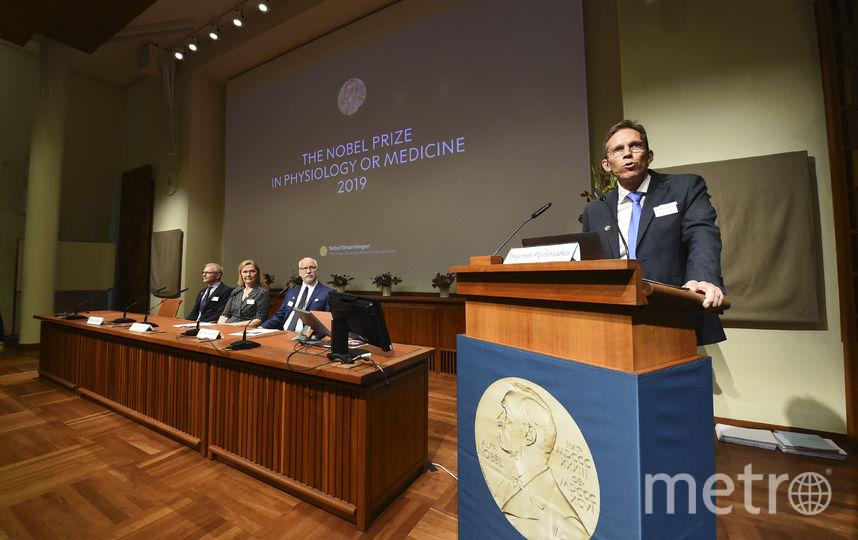 Вручение Нобелевки. Фото AFP
