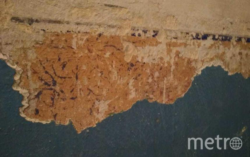 В Петербургском доме найдена дореволюционная трафаретная роспись. Фото предоставлено активистами