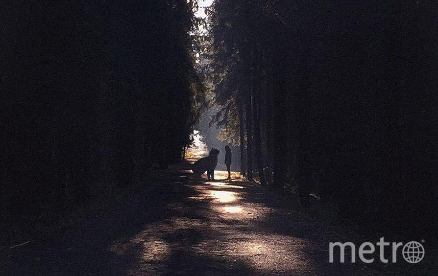 """С этой фотографии началось увлечение Андрея. Фото Скриншот Instagram/odnoboko, """"Metro"""""""