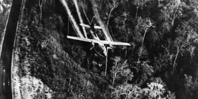 Один из подвидов турбовинтового самолёта Fairchild – модель C-123 Provider.