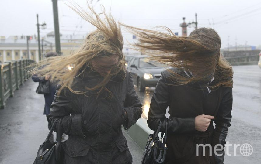 Ветер и дождь обрушатся в выходные на Петербург. Фото Интерпресс