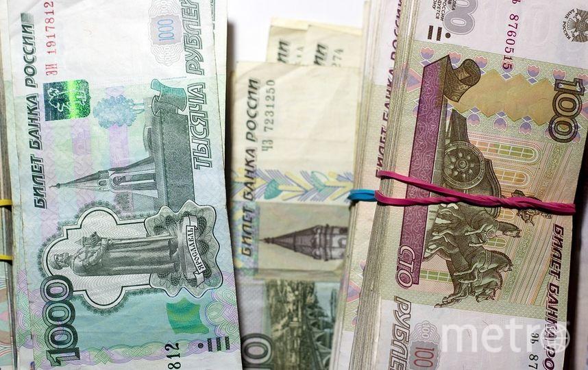В Петербурге алиментщик задолжал детям более 1 млн рублей. Фото pixabay.com