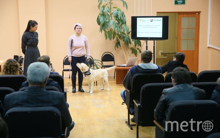 Водителей московского социального такси обучают обращению с собаками-поводырями. Фото Василий Кузьмичёнок