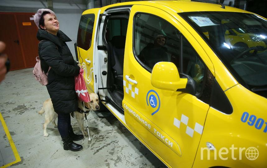 Наталья Кузнецова и Флай часто пользуются такси. Фото Василий Кузьмичёнок