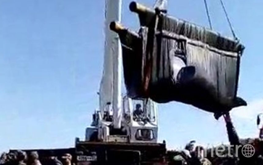 Выпуск белух в воды Сахалинского залива. Фото РИА Новости