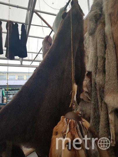 Изъятые шкуры. Фото Комитета по природопользованию
