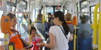 5 тонкостей транспортной реформы в Петербурге: что изменится через год