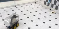 Учёные научили крыс водить крошечные машины