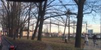 Женщина попала под поезд в Пушкинском районе Петербурга
