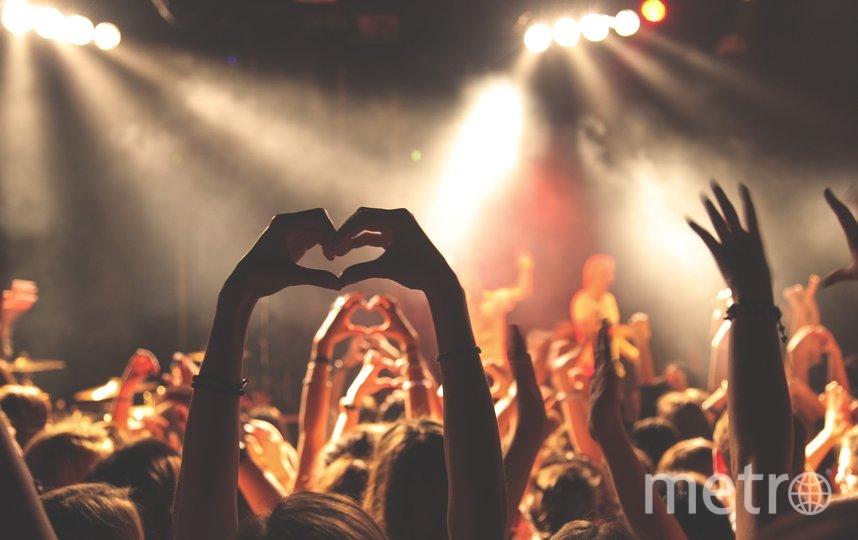 """""""Зажечь"""" на одном из ноябрьских концертов. Фото Pixabay"""