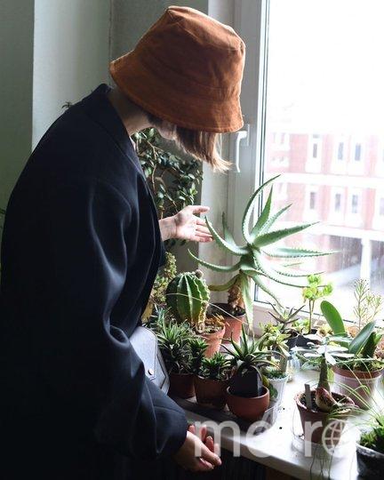 """В Петербурге запустили """"зелёный"""" проект для общественных пространств. Фото  instagram @plants_for_friends"""
